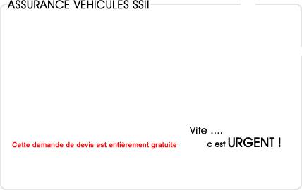 assurance automobile informatique (ssii)
