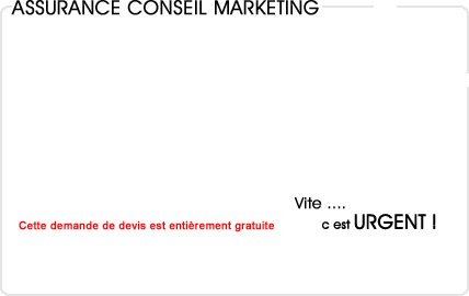 assurance conseil en marketing