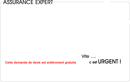 assurance expert