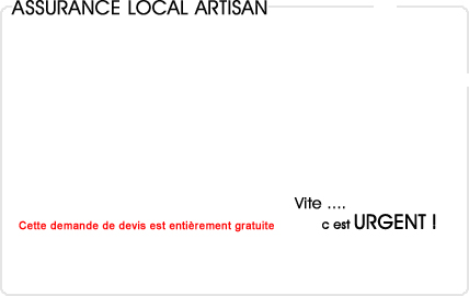 assurance local decennale artisan