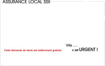 assurance local informatique (ssii)