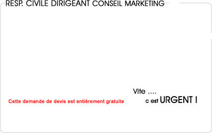 assurance responsabilité civile dirigeant conseil en marketing