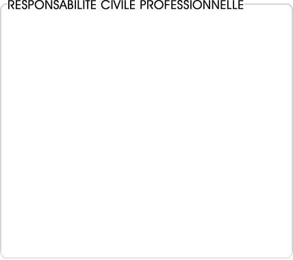 responsabilite civile professionnelle