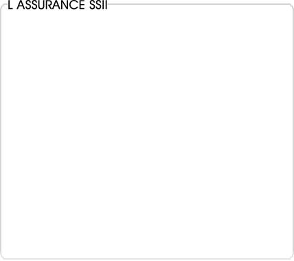 assurance informatique (ssii)